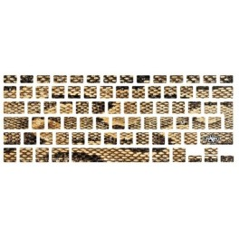 Stickers clavier Jungle Snake Gold